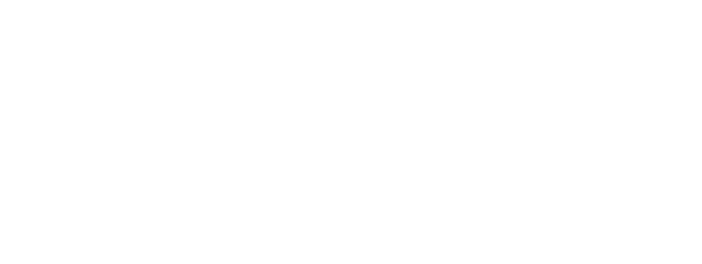 Action Airlines